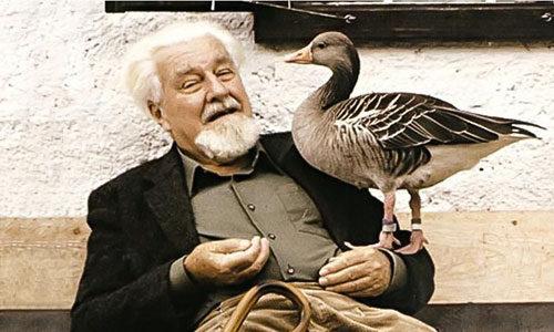 Конрад Лоренц