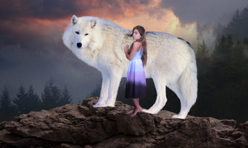 Девочка и волк. Дорисовываем