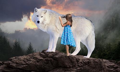 Девочка и волк. Собираем